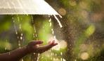 Що обов'язково потрібно зробити в День пророка Іллі