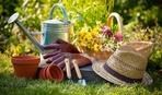 Работы в саду и огороде в августе: собираем урожай и  готовимся к осени