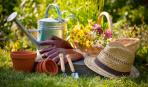 На заметку цветоводу: как правильно поливать сад