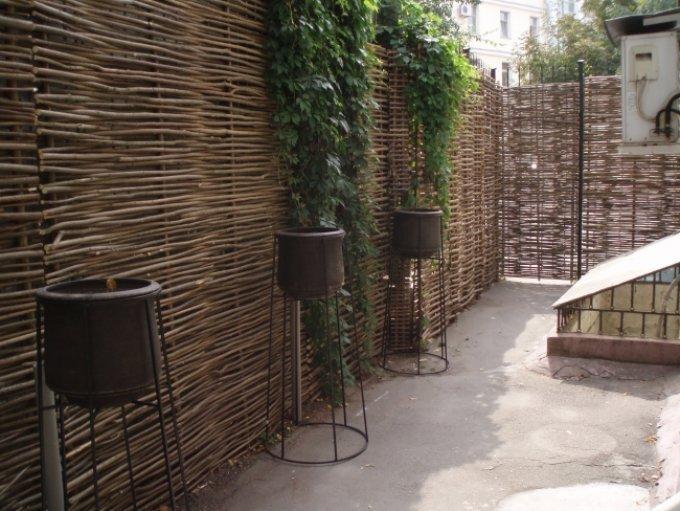 Декоративный забор из лозы: 3 полезных идеи