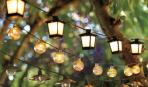 Освещение в саду: 3 главных дизайнерских фишки