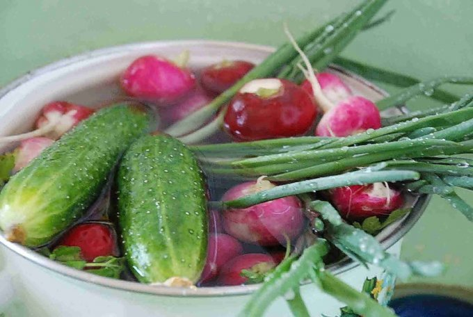 В каких весенних овощах больше всего нитратов?