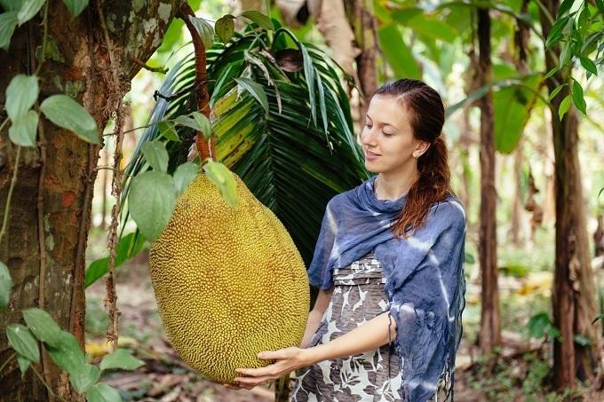 На смену какао-бобам может прийти джекфрут