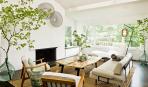 Полезные растения для дома: 5 зеленых помощников