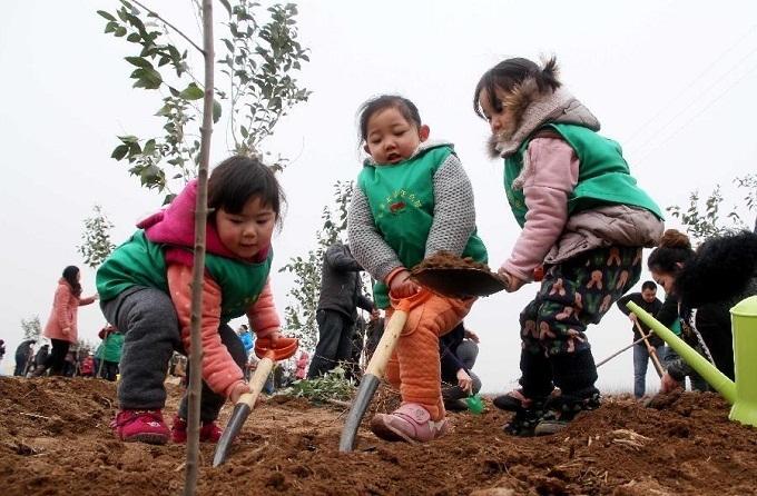 12 марта – День посадки деревьев в Китае