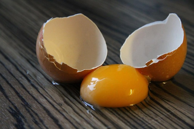 Какие яйца выбирать – белые или коричневые