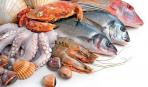 5 видов полезной рыбы, которые мы игнорируем