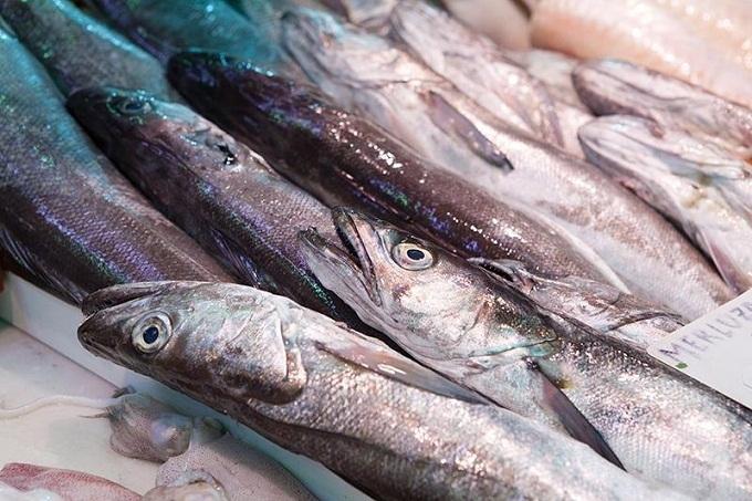 ТОП-5 видов полезной рыбы, которые мы игнорируем