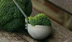 Топ-5 вкусных рецептов из брокколи для худеющих