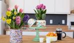 Цветы к 8 марта: все секреты посадки луковичных