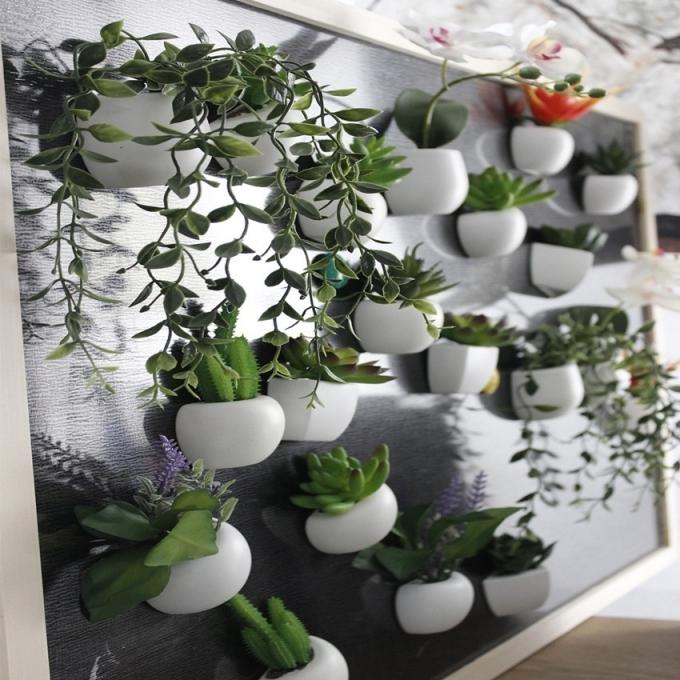 Страстный цветовод: в поиске необычных мест для комнатных цветов