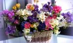 Флористика для начинающих: правила роскошного букета