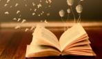 ТОП-10 самых популярных книг в мире