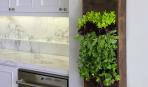 Вертикальный сад в доме: простой способ окружить себя зеленью