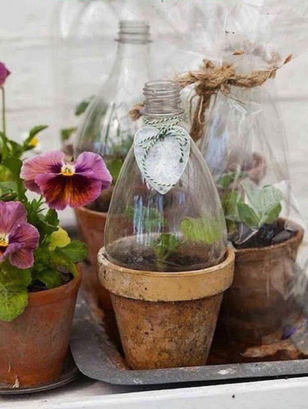 Лайфхак для переезда: готовим «купол» для цветов