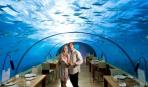 В Индии можно пообедать в аквариуме