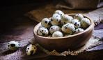 Перепелиные яйца: польза и вред знакомого продукта