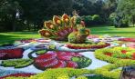 Традиционное цветочное шоу в Киеве