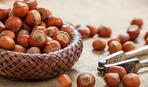 Лесной орех, лещина и фундук: в чем отличия?