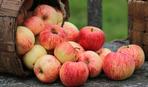 На что обратить внимание в Яблочный спас: приметы праздника