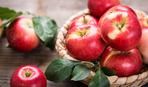Яблочный спас: чего категорически нельзя делать в этот день