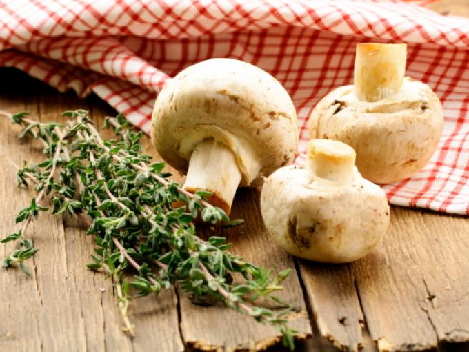 можно ли есть при диете грибы