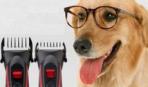 Выбираем машинку для стрижки собак