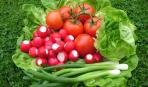 Ранние овощи: техника безопасности