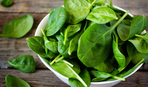 Топ-5 полезных рецептов из шпината