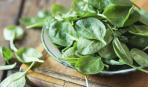 Выращивание шпината в домашних условиях