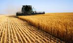 18 ноября - День работников сельского хозяйства