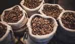 В Арктиці знайшли бочку з кавовими зернами 1902 року