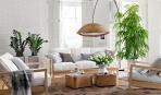 Проветривание помещений с комнатными растениями