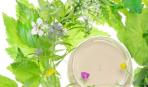 Растительные лосьоны, настои, отвары в косметологии