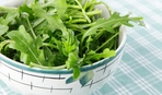 Огород на подоконнике: как вырастить рукколу