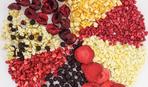 Делимся  опытом: сублимированные ягоды и фрукты от GF Trading