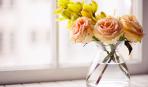 Советы и факты о свежести цветов