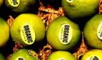 Пометка «Органический продукт» вводит покупателей в заблуждение