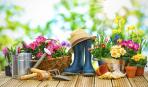 Весенние работы в саду: что и как?