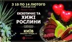"""До Дня Всіх Закоханих в Києві відбудеться ярмарок """"Love is..."""""""