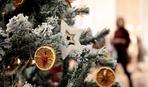 Игрушки на елку из цитрусовых