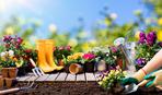 Лунный календарь садовода-огородника на май 2019