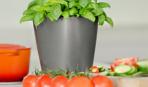 Полезные устройства для вашей кухни
