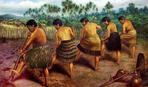 Какому продукту поклонялись маори?