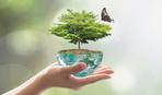 22 апреля: Международный день Земли