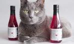 Что вы знаете про вино для кошек?