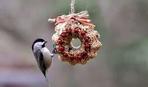 Фотогалерея: оригинальные кормушки для птиц