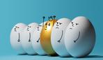 Почему американцы напрасно моют яйца или 7 защит от сальмонеллы