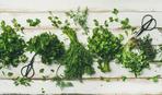 ТОП-5 кухонных новинок для нарезки зелени