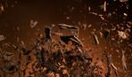 Новини кулінарії: нова шоколадна крихта від інженера Тesla